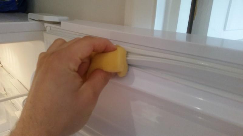 how to clean fridge door seals